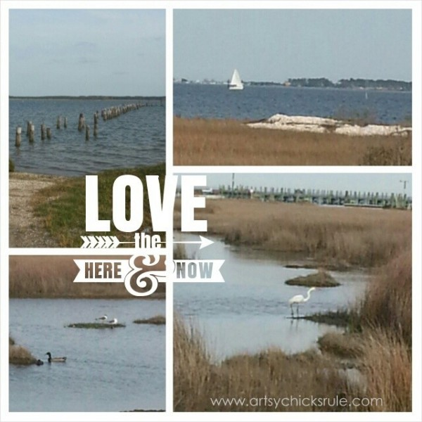 My Favorite Things - I Love Where I Live - artsychicksrule.com #coast #coastal #water #ocean