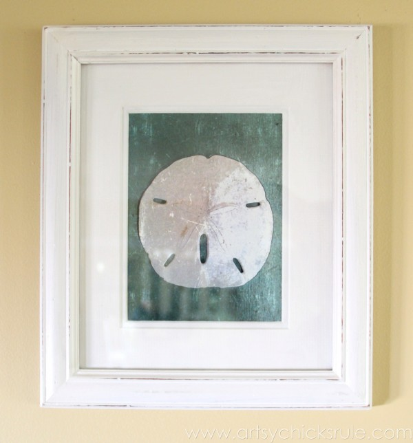 Simple & Thrifty DIY Coastal Wall Art - Up Close Sand Dollar -artsychicksrule.com #thrifty #coastal #wallart #diy #art