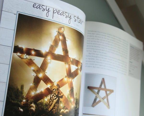 DIY Wood Pallet Book Review - Star