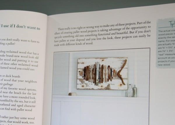 DIY Wood Pallet Book Review - Fish