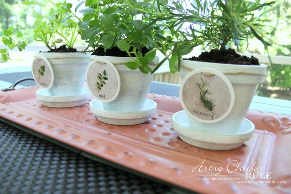 DIY Decorative Clay Pots for Herbs - Easy! -artsychicksrule.com