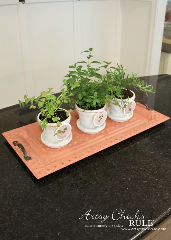DIY Decorative Clay Pots for Herbs - Keep them on a tray so you can move to the sun -artsychicksrule.com