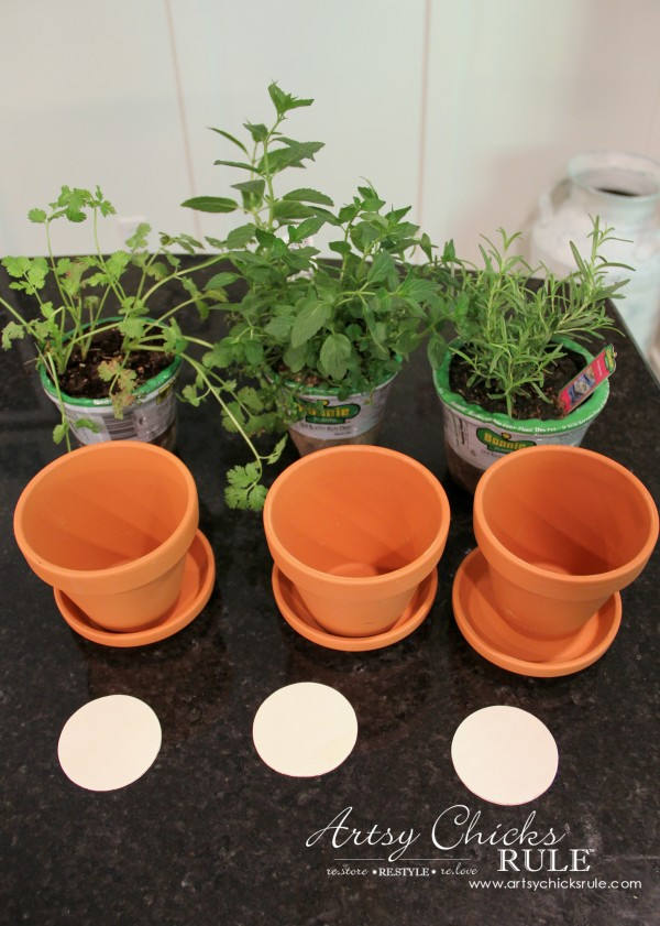 DIY Decorative Clay Pots with Herbs (decorating challenge ...