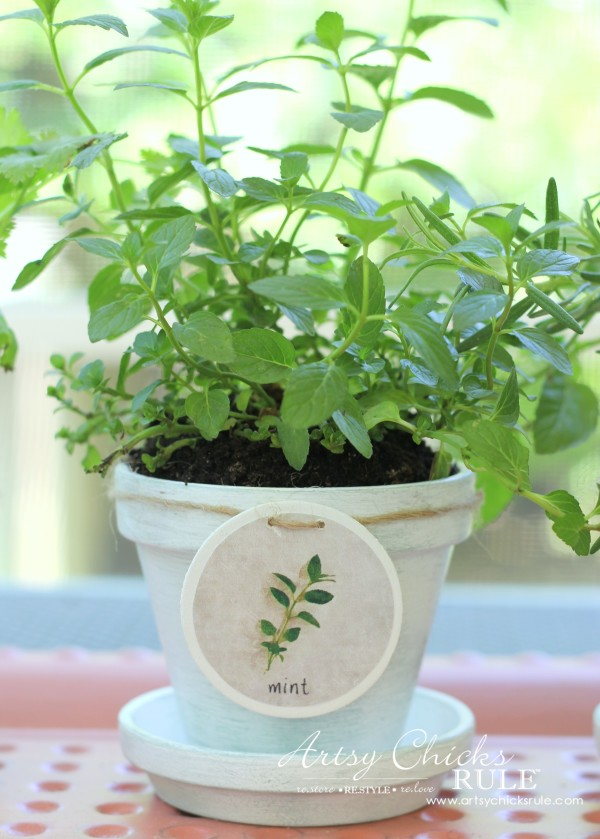 DIY Decorative Clay Pots for Herbs - Mint -artsychicksrule.com