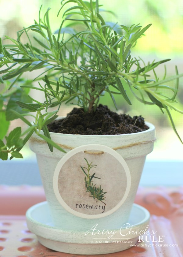 DIY Decorative Clay Pots for Herbs - Rosemary -artsychicksrule.com