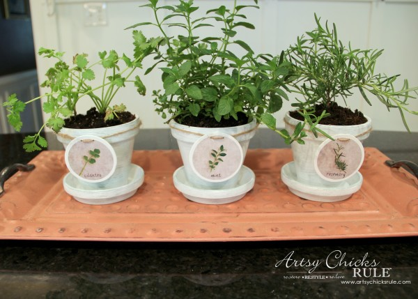 DIY Decorative Clay Pots for Herbs - SO easy! -artsychicksrule.com