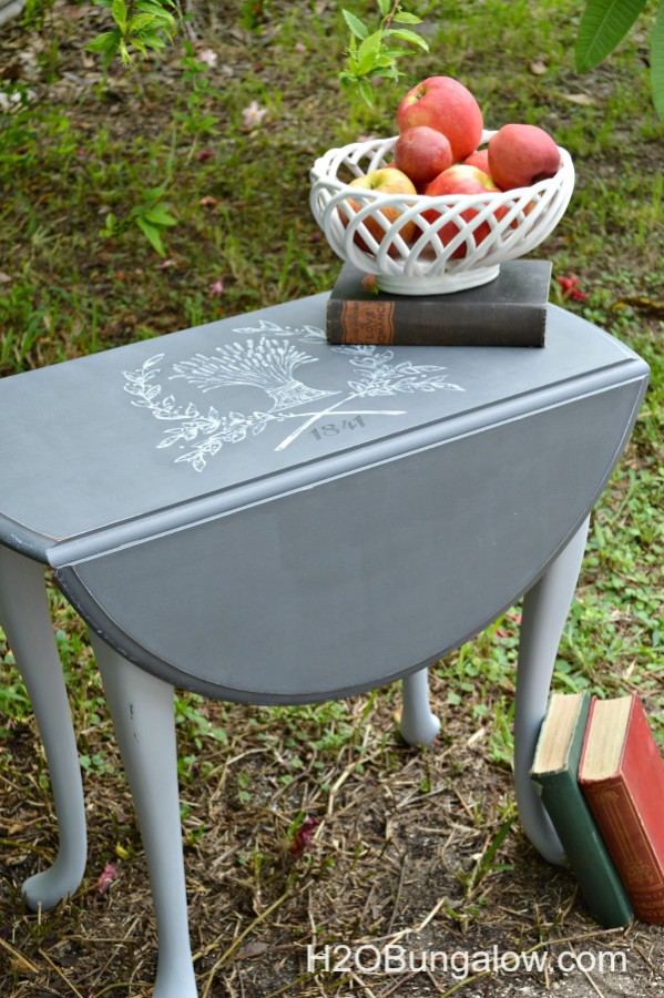 Furniture Makeover with Graphics - H2o Bungalow 2