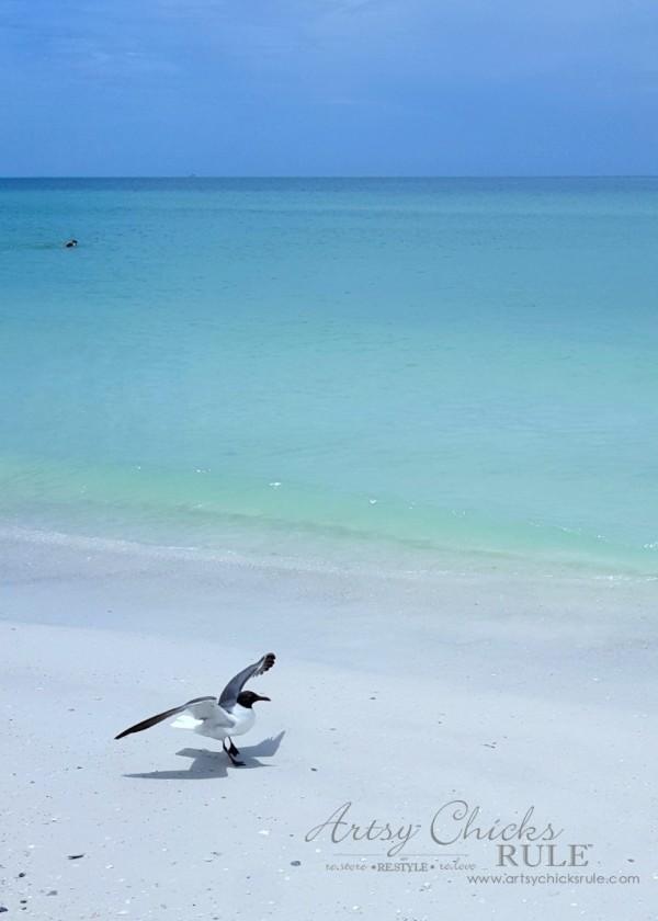 Anna Maria Island Florida Vacation - beach is amazing - artsychicksrule