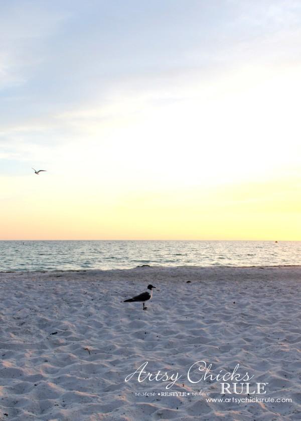 Anna Maria Island Florida Vacation - so beautiful - artsychicksrule