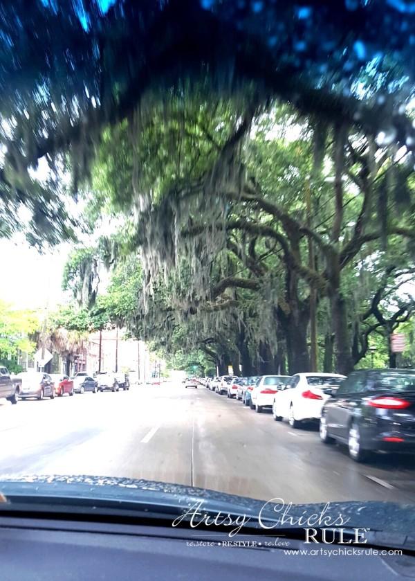 Historic Savannah GA - love the moss - artsychicksrule