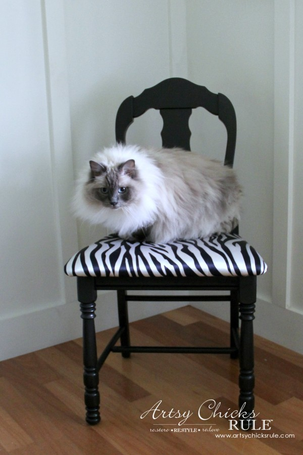 Zebra Chair Makeover (Animal Theme)  - My cat likes it! - $5 dollar thrifty makeover - artsychicksrule
