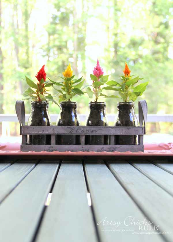 Decorating with Potted Plants - Unique Planter Ideas - CELOSIA - artsychicksrule #pottedplants #planterideas