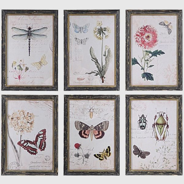nature-wood-framed-wall-decor-set-of-6_1- Antique Farmhouse