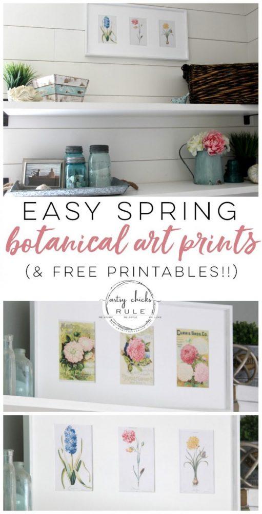 Spring Botanical Art Prints! (free printables!) artsychicksrule.com #artprints #springdecor #botanicalprints #seedcatalog #springbotanicalart #freeprintables