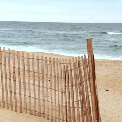 Outer Banks Things To Do (and see!)