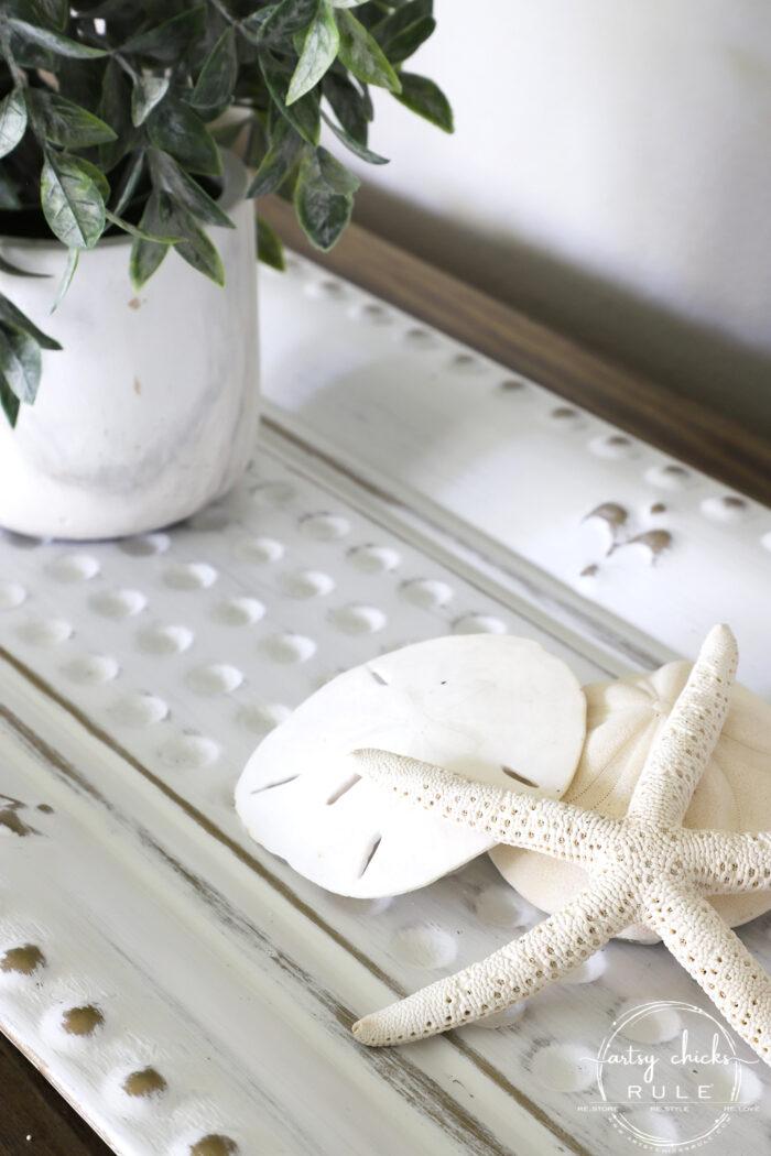 Seashells on tray artsychicksrule.com