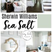 "Sherwin Williams Sea Salt (gorgeous coastal ""neutral""!)"