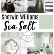 """Sherwin Williams Sea Salt (gorgeous coastal """"neutral""""!)"""