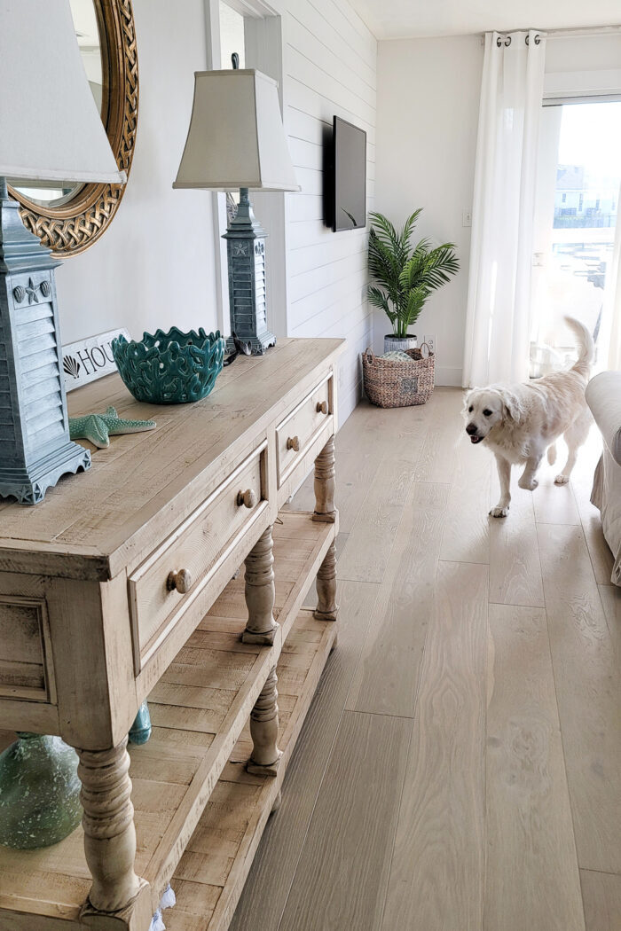 yellow console, bleached floors, white dog