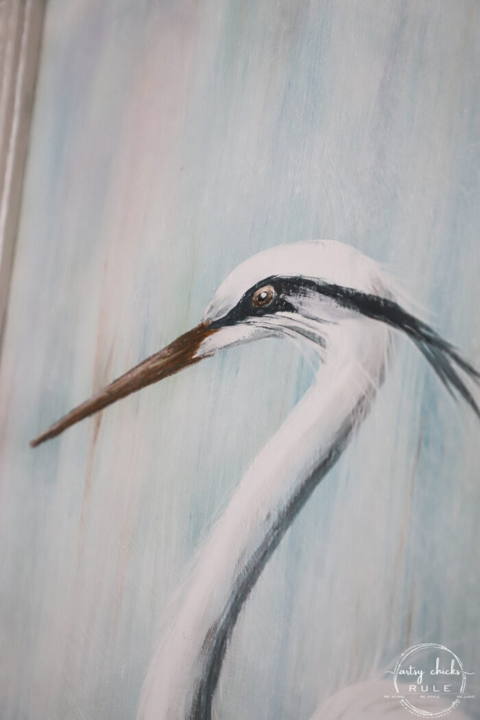 close up of blue heron head and eye