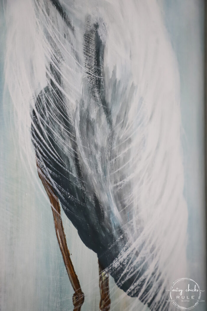 up close of blue heron body and feathers