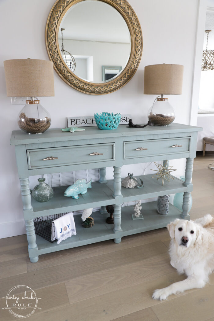 aqua console with white dog Ryder in front