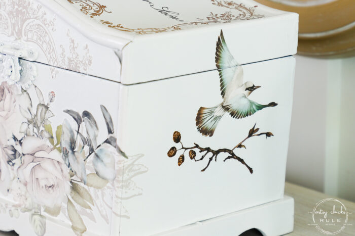 sideview of bird and branch on white box