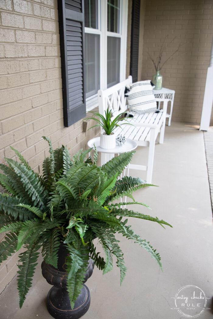 green fern in black urn with white bench