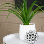 Black and White Porch Decor (with touches of green!)