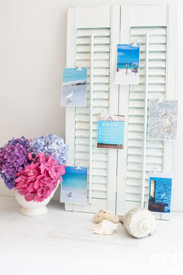 white shutters with photos and pink flowers
