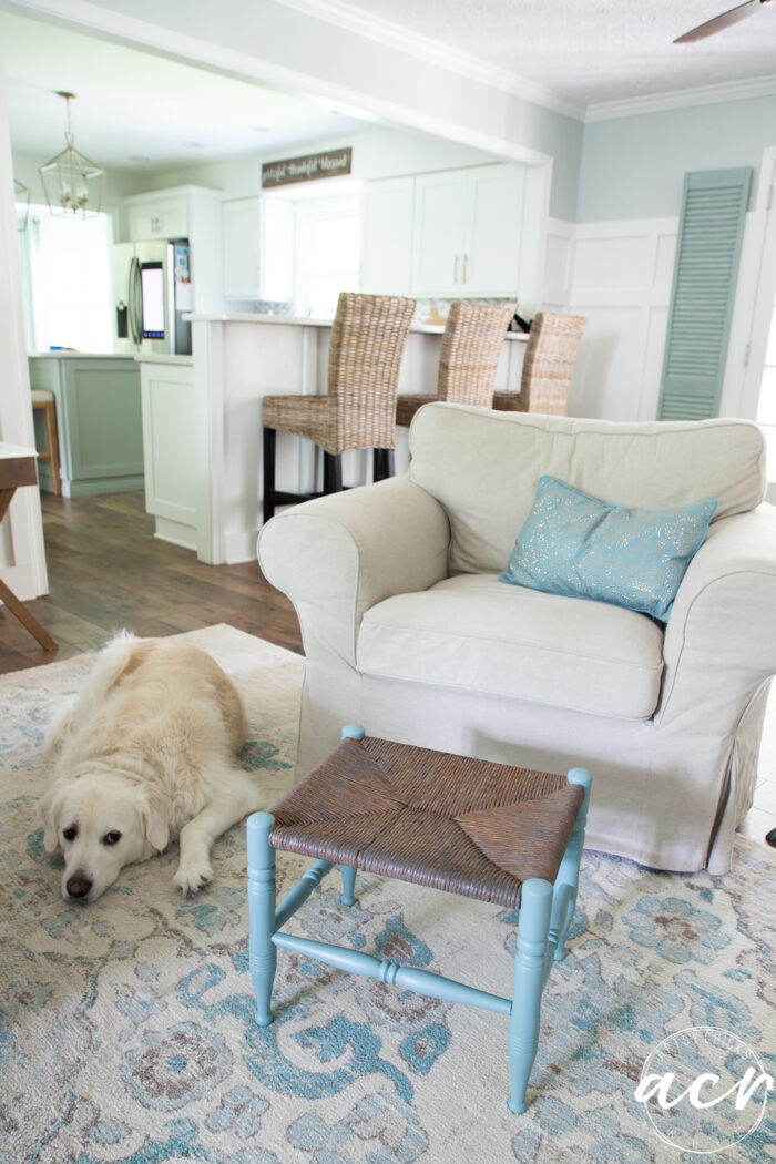 coastal home with tans and blues and white dog