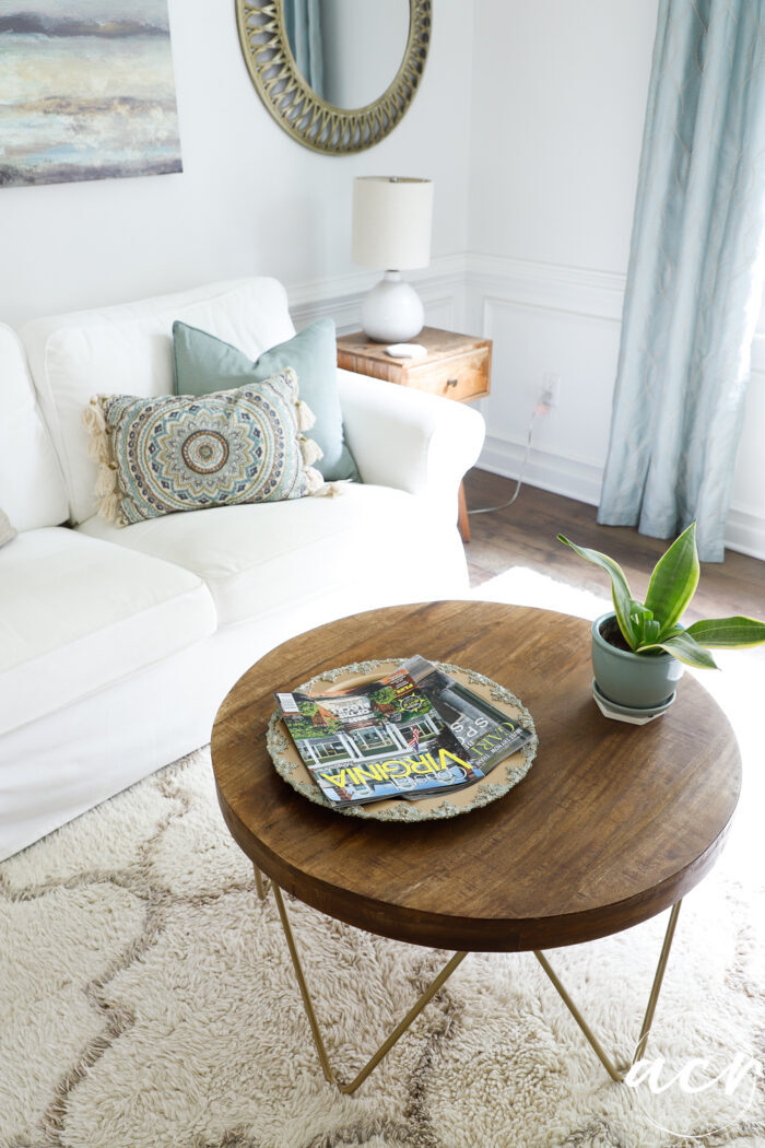 white couch, wood table with plant and gold tray with magazines